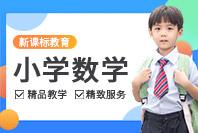 新课标教育小学数学同步课程